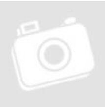 Dália egyszerű virágú színkeverék 1 g