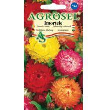 Szalmavirág vetőmag színkeverék 1 g