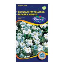 Fátyolvirág (egynyári) 2 g
