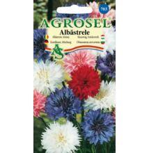 Búzavirág vetőmag színkeverék 2 g