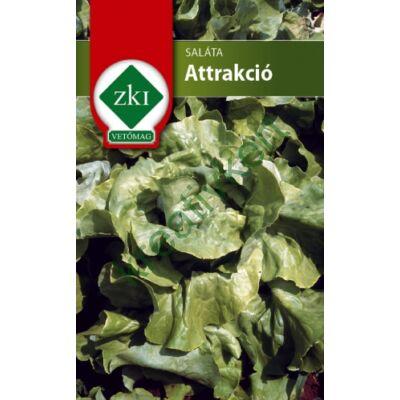 Saláta Attrakció 3 g